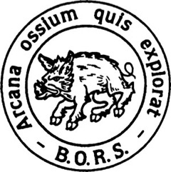 BORS-logo-for-web
